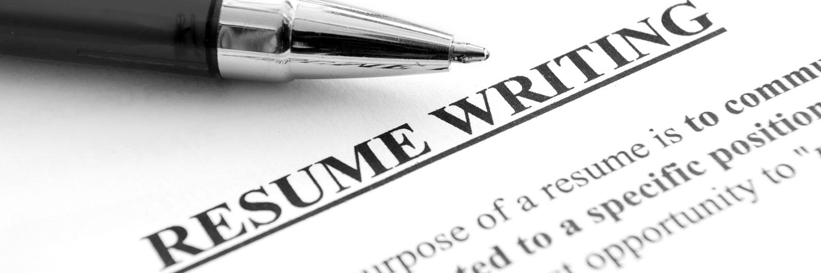 resume writing services in punjab chandigarh haryana himachal delhi